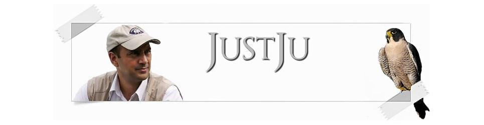 JustJu